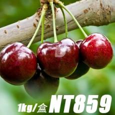 櫻桃:紐西蘭新鮮空運1kg/盒(含運)